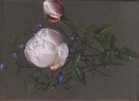 stilleben med rosor och violer by ida rasmussen