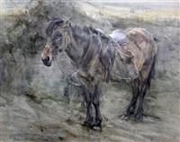 pannier pony by edwin john alexander