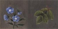 stilleben med blå blommor by ida rasmussen