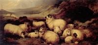 græssende får i hojlandet by john charles morris