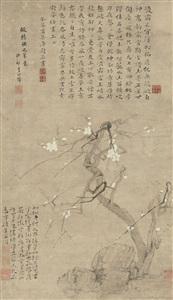 寒梅 (plum) by li shizhuo