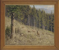 deer in a wooded landscape by arthur polzer-hoditz
