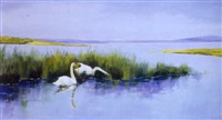 kystparti med svanepar by axel lind