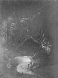fasan, krähe und taube by camill macklot