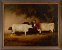 a group of four prize cattle by thomas weaver