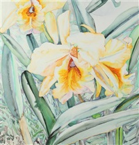yellow iris by patricia tobacco forrester