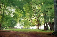 beech trees in summertime by carl frederik peder aagaard