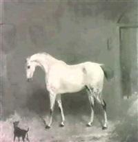 a grey in a loose box by edward walter webb
