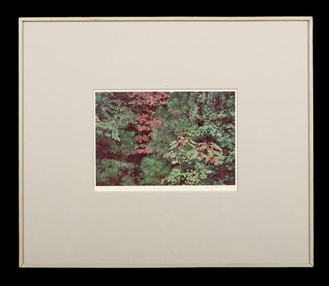 untitled by harry callahan