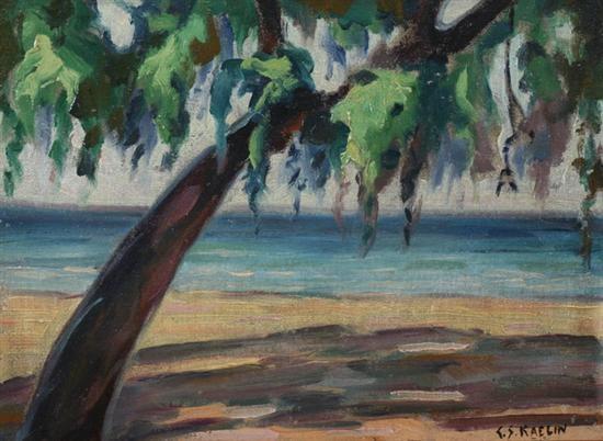 shoreline by charles salis kaelin