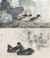 mandarin ducks by xu xiaobing