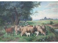 man tending sheep at the edge of a wood by fritz van den daele
