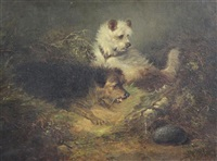 terriers beside a rabbit hole by edward armfield