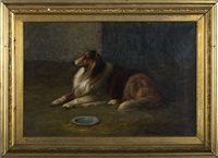 the collie by louis contoit