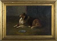the collie by louis contoit
