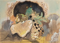 baumpilze/1978 by roland bugnon