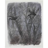 canards et étoile by robert hainard