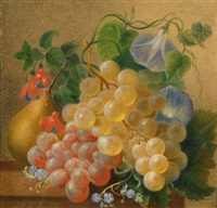 still life by jan van der waarden