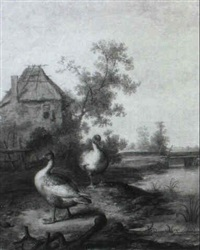 two geese by margarethe de heer