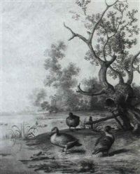 ducks by the water's edge by margarethe de heer