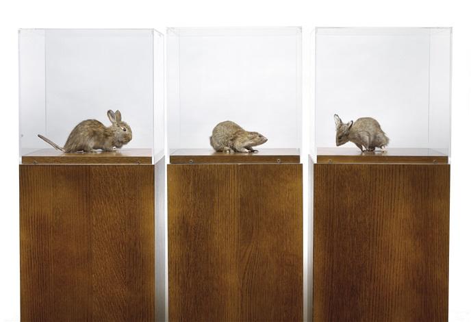 misfits triptych by thomas grünfeld