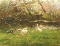 ducks by the waterside by willem maris