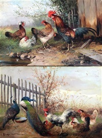 studies of chickens and peacocks (pair) by magda langenstrass-uhlig