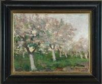 blühende bäume by stefan filipkiewicz