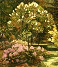 blomstrende rhododendron og syrener i en have by matthias m. peschcke-køedt