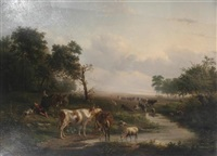 cattle and sheep watering in an extensive landscape by jan bedijs tom