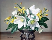 christmas roses and winter jasmine by james noble