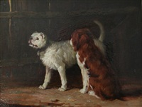 two dogs in a yard by henry calvert