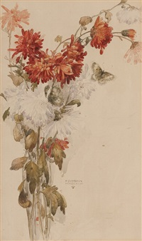 study of chrysanthemums by katharine cameron