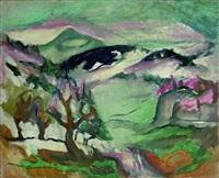 landschaft by bernard hasler
