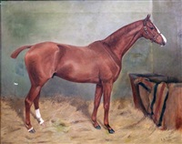 portrait of a chestnut hunter in a stable by alfred grenfell haigh