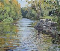 river liffey, lucan by kevin mcnamara