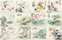 设色花鸟鱼虫册 (birds and flowers) (album of 12) by liu deliu