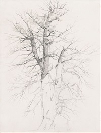 im söcking (+ baum (study), verso) by ernst kreidolf
