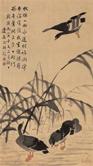 芦雁图 by bian shoumin