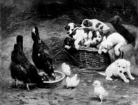 im stall, sechs welpen in und vor einem weidenkorb beobachten zwei hennen und drei kueken by caspar von reth