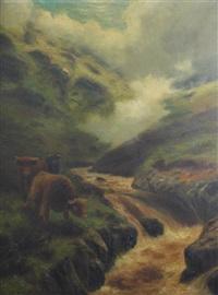 highland rovers by douglas cameron
