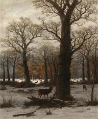 verschneiter eichenwald mit rotwild by caesar bimmermann