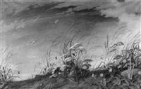 blühende sommerwiese mit schmetterlingen by walther hoeck