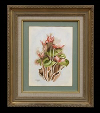 cyclamens by charles demuth