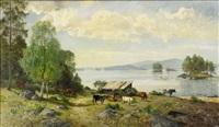 nordsvenskt landskap med kor på bete by olof arborelius