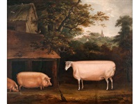 ram with two pigs by a sty by thomas weaver