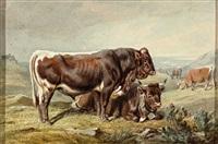sieben kühe in weiter hügeliger landschaft vor dramatischer wolkenstimmung by benno raffael adam