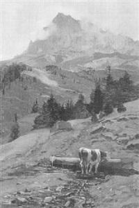 cime d'oche by edouard-louis-auguste metton
