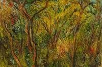 árboles by imeldo corral gonzalez