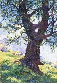 larice by rodolfo olgiati